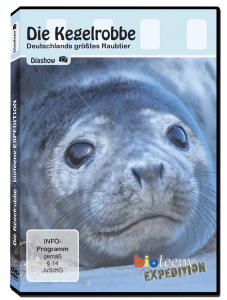 DVD-Cover_Front_700